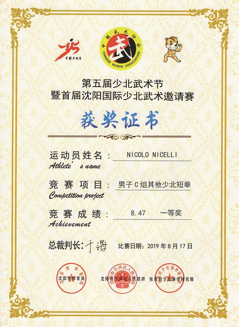 diploma-mani-nude-shaobei-shenyang-2019