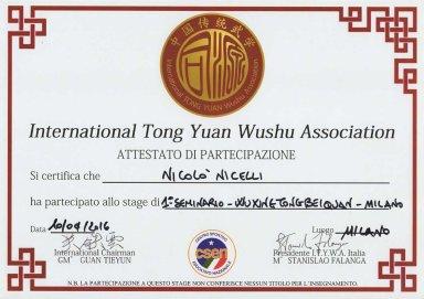 attestato-1-seminario-wuxing-tongbeiquan