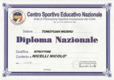 diploma-istruttore-tong-yuan